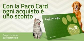 Paco Card