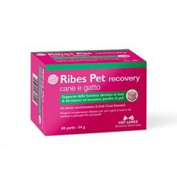 Nbf Lanes Ribes Pet Perle...