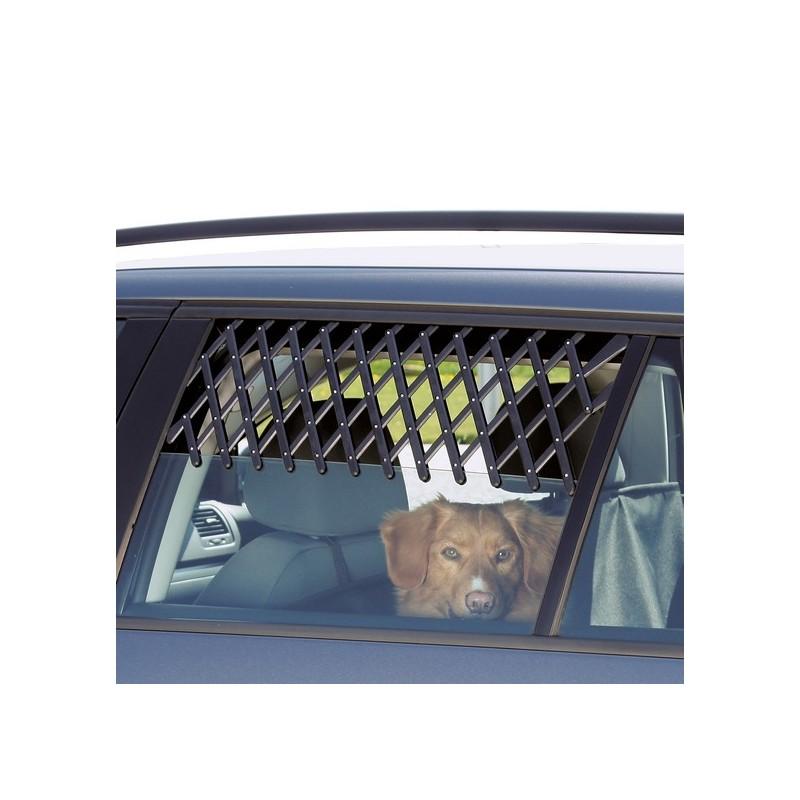Griglia di aerazione per automobile