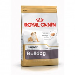 Royal Canin Bulldog Junior Crocchette