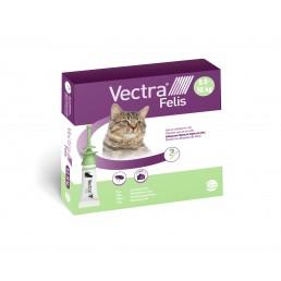 Vectra Felis...