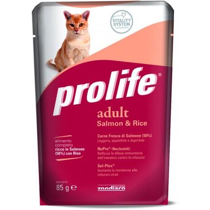 Prolife Adult Cat Salmone e Riso Umido