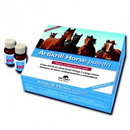Nbf Lanes Artikrill Horse...