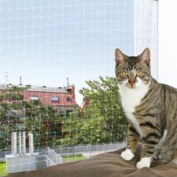 Rete di sicurezza per gatti