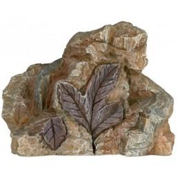 Fossili Decorazione per...
