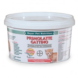 Bayer Primolatte Gattino