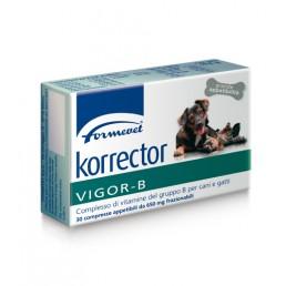 Korrector Vigor-B