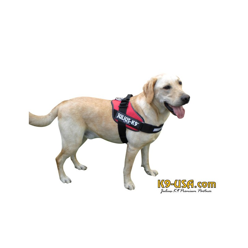 Julius K Dog Harness Reviews