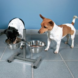 Dog Bar Set Ciotole per Cani