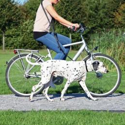 Guinzaglio per Bicicletta e Jogging