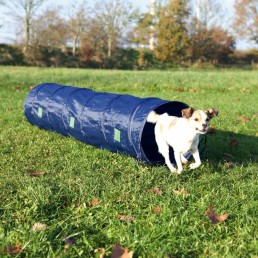 Tunnel Agility per cani