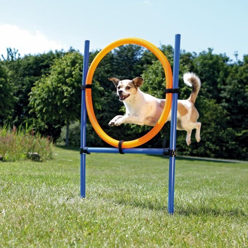 Anello per agility dog