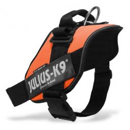 Julius K9 IDC Power Harness Pettorina per Cani ORANGE