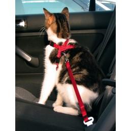 Cintura di Sicurezza per Gatti