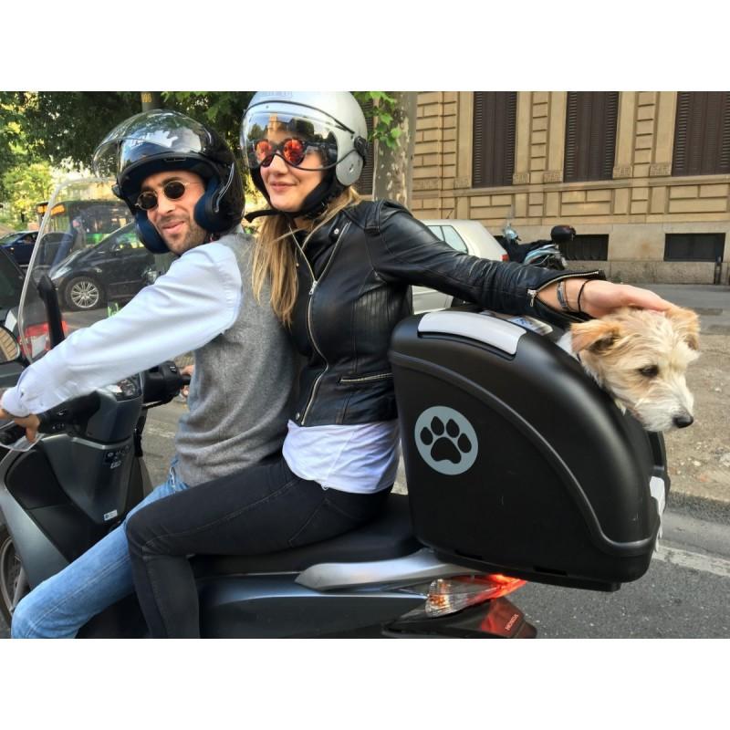 Pow bauletto per trasporto di animali su moto e scooter for Trasportino cane scooter