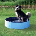 Piscina per Cani De Luxe