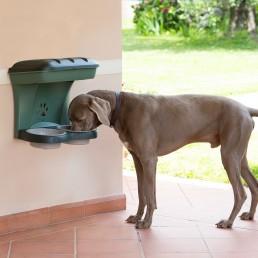 Food Stand Ciotole da Parete per Cani