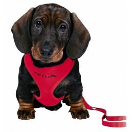 Pettorina con Guinzalgio Puppy Dog