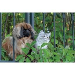 Tenax Pet Hobby 10 Rete Anti-Fuga