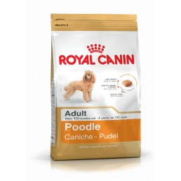 Royal Canin Barboncino...