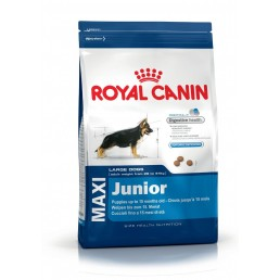 Royal Canin Maxi Junior per Cani