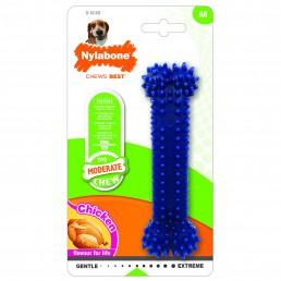 Nylabone Dental Chew per Cani