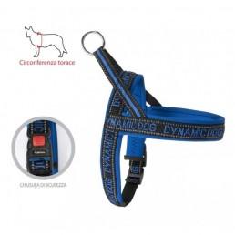 Dynamic Dog Pettorina per Cani Blu
