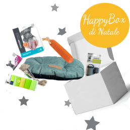 HappyBox di Natale Dream...