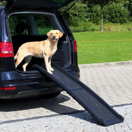 Pedane In Plastica Per Cani.Petwalk Rampa Pieghevole E Un Aiuto Per Tutti I Cani Che Hanno