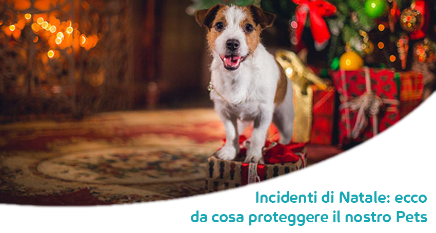 Proteggere Cani E Gatti Dagli Incidenti Di Natale