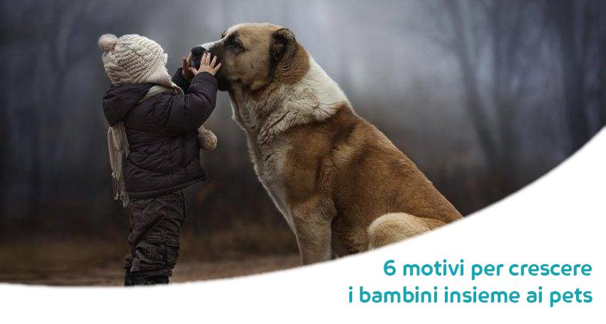 Crescere Con Un Cane O Un Gatto 6 Motivi Per Cui Ogni Bambino