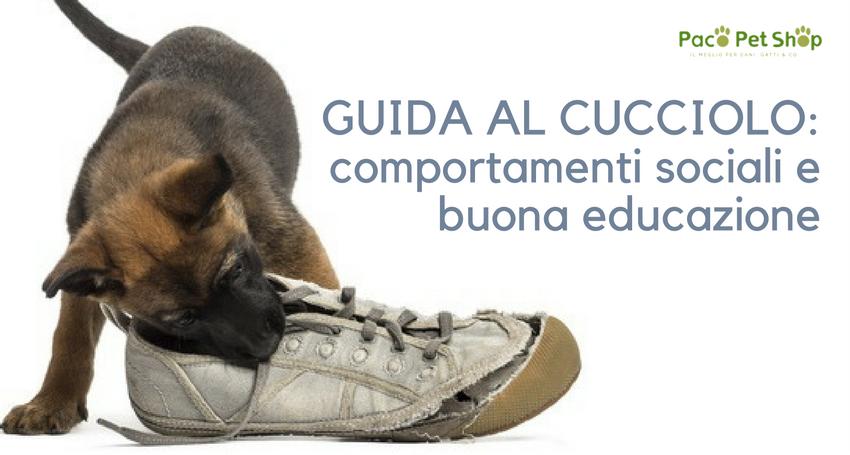 Capire Il Cucciolo Di Cane Perché Trema Perché Ha Il Singhiozzo E