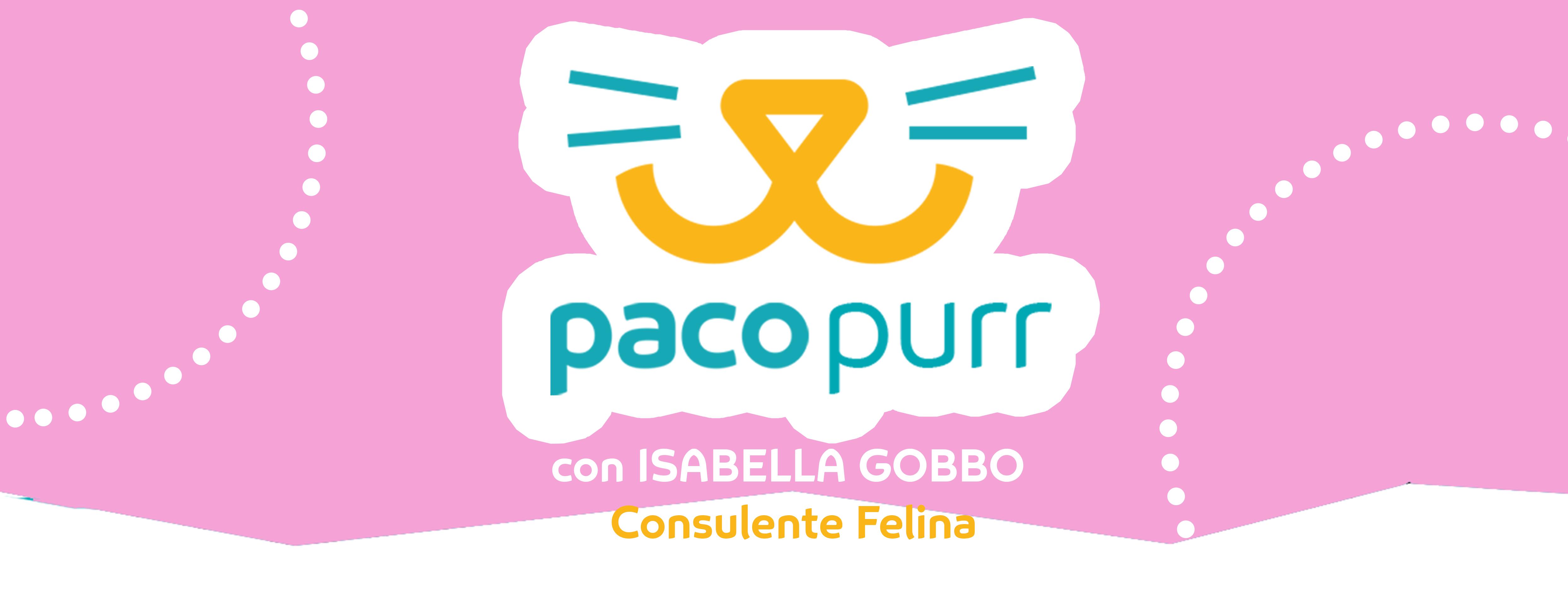 copertina-pacopurr.png