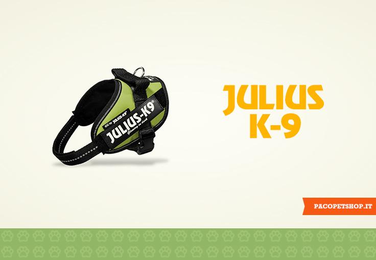 Pettorina Julius K9 per cani: la numero 1 al mondo