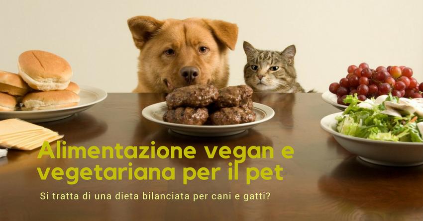 Alimentare Il Cane Ed Il Gatto Con Crocchette Vegan E Vegetariane Paco