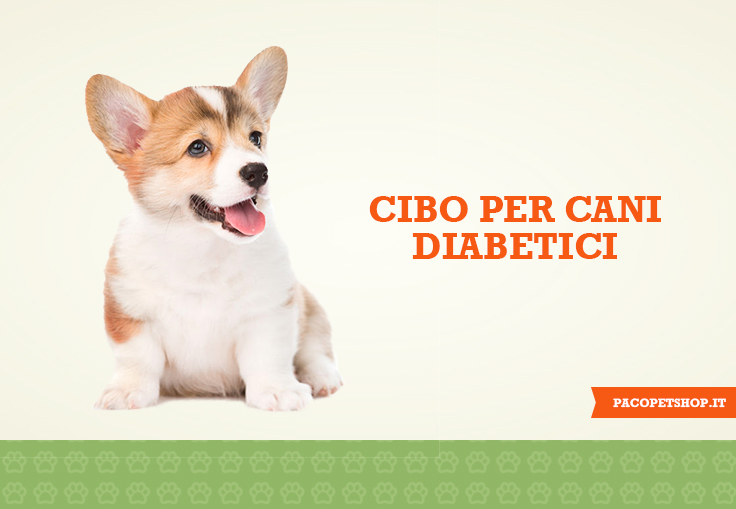 Cibo per cani diabetici